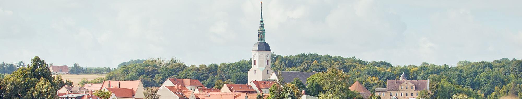 Stadt Dohna Banner